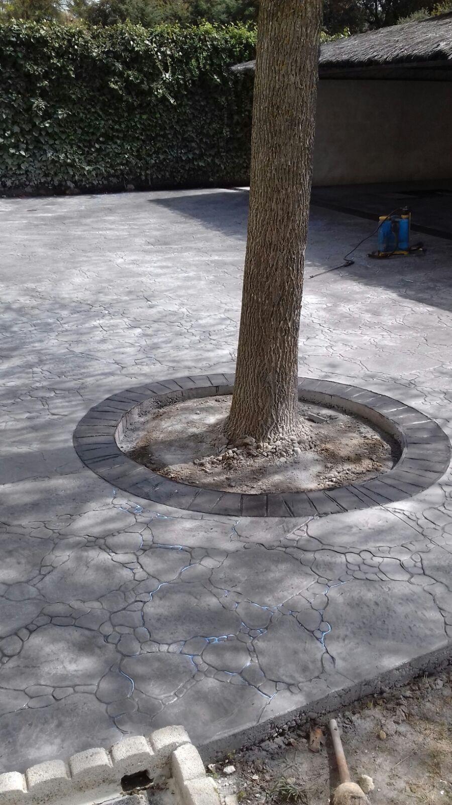 suelo exterior de jardin con maceta de arbol
